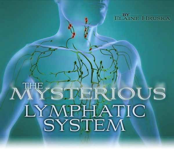 The Mysterious Lymphatic System Banner